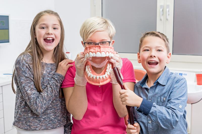 Junge Zahnarzthelferin zeigt zwei Kindern spielerisch das richti