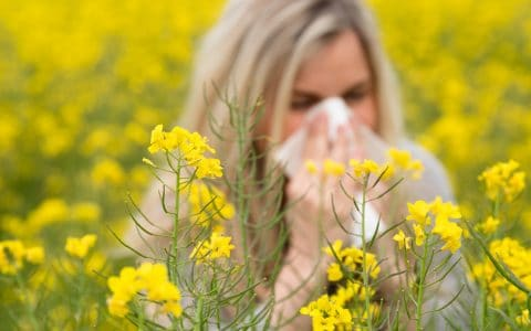 How Do Seasonal Allergies Affect Your Oral Health